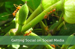 Getting Social on Social Media