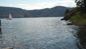 summer-lake-scene