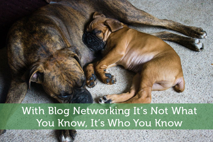 With Blog Networking It's Not What You Know, It's Who You Know