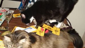 cat-monopoly