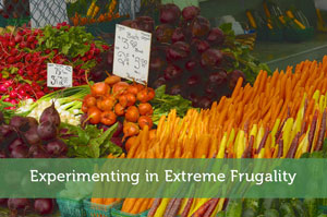 Experimenting in Extreme Frugality