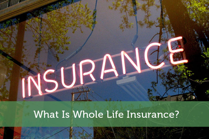 whole life insurance policies not only provide financial protection