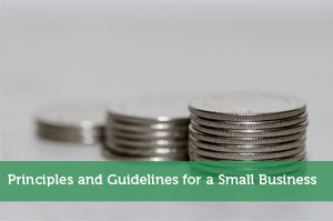 Principles and Guidelines for a Small Business