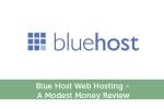 Blue Host Web Hosting - A Modest Money Review