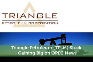 Triangle Petroleum (TPLM) Stock: Gaining Big on OPEC News