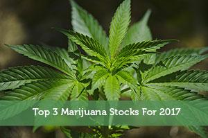 Top 3 Marijuana Stocks For 2017
