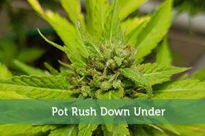 Pot Rush Down Under