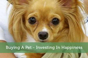 Jeremy Biberdorf-by-Buying A Pet – Investing In Happiness