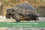 The Slow, Exponential Growth of Online Income