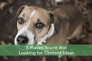 5 Places You're Not Looking for Content Ideas