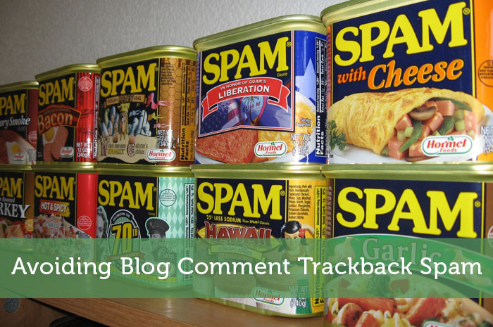 Avoiding Blog Comment Trackback Spam