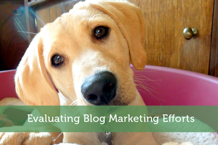 Evaluating Blog Marketing Efforts
