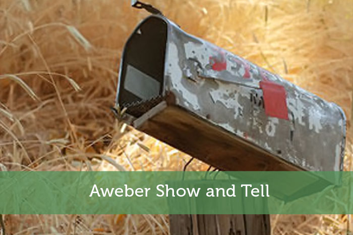 Aweber Show and Tell