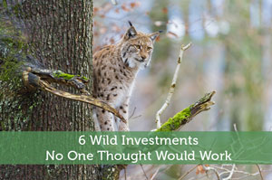 6 Wild Investments No One Thought Would Work