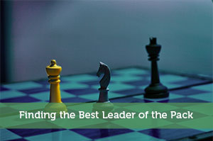 Finding the Best Leader of the Pack