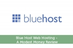 Blue Host Web Hosting - A Modest Money Review