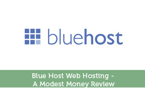 Blue Host Web Hosting – A Modest Money Review