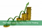 The Macro and the Micro in Forex Trading