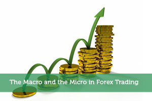Micro forex brokers
