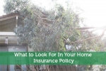 What to Look For In Your Home Insurance Policy
