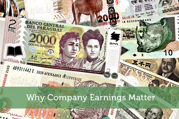 Why Company Earnings Matter