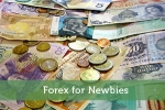 Forex for Newbies