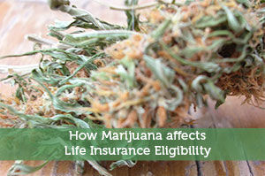 How Marijuana affects Life Insurance Eligibility
