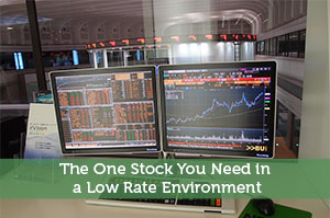 The One Stock You Need in a Low Rate Environment