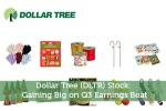 Dollar Tree (DLTR) Stock: Gaining Big on Q3 Earnings Beat