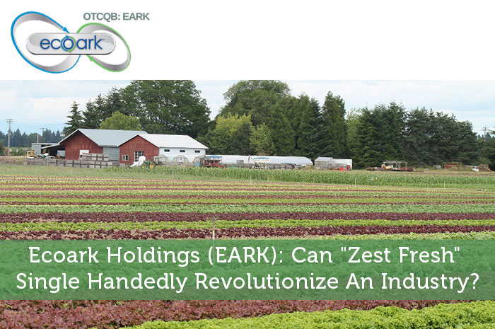 "Ecoark Holdings (EARK): Can ""Zest Fresh"" Single Handedly Revolutionize An Industry?"