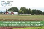 """Ecoark Holdings (EARK): Can """"Zest Fresh"""" Single Handedly Revolutionize An Industry?"""