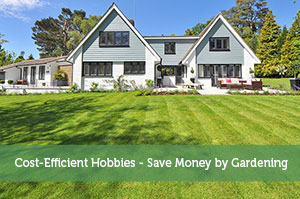 Cost-Efficient Hobbies - Save Money by Gardening