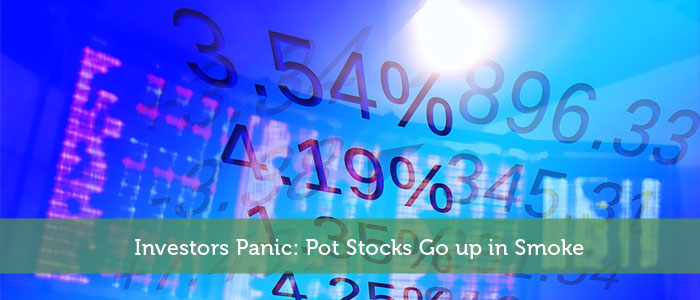 buddhamoney-by-Investors Panic: Pot Stocks Go up in Smoke