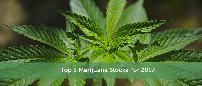 Top 3 Marijuana Stocks For 2017