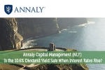 Annaly Capital Management (NLY): Is the 10.6% Dividend Yield Safe When Interest Rates Rise?