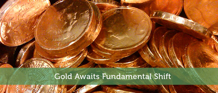 Gold Awaits Fundamental Shift