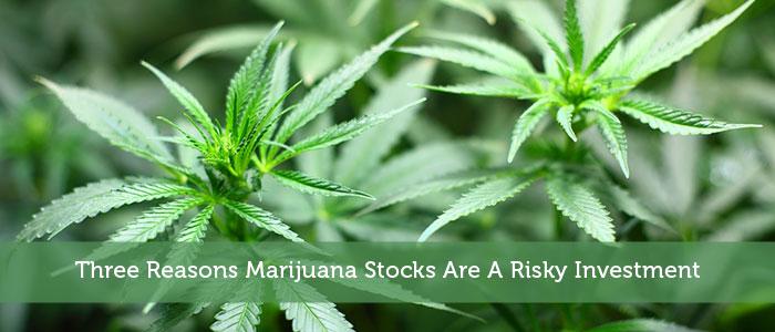 Three Reasons Marijuana Stocks Are A Risky Investment