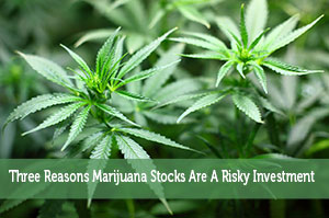 Three Reasons Marijuana Stocks Are A Risky Investment