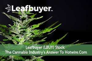 Leafbuyer (LBUY) Stock: The Cannabis Industry's Answer To Hotwire.Com
