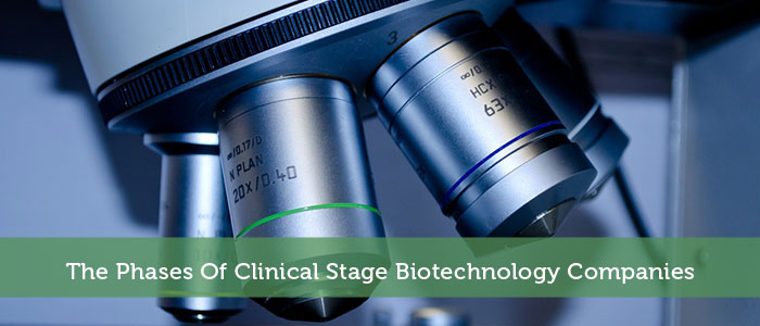 The Phases Of Clinical Stage Biotechnology Companies