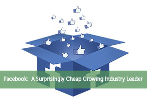 Facebook:  A Surprisingly Cheap Growing Industry Leader