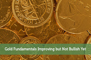 Jeremy Biberdorf-by-Gold Fundamentals Improving but Not Bullish Yet