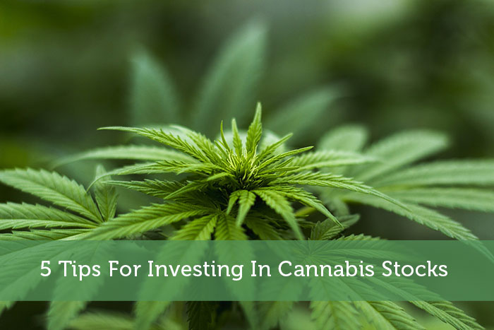 5 Tips For Investing In Cannabis Stocks