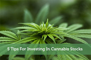 Josh Rodriguez-by-5 Tips For Investing In Cannabis Stocks