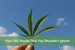 Josh Rodriguez-by-Five CBD Stocks That You Shouldn't Ignore