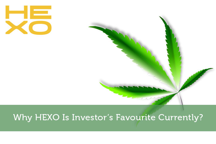 Why HEXO Is Investor's Favourite Currently?
