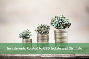 Jeremy Biberdorf-by-Investments Related to CBD Isolate and Distillate