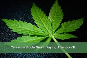 Josh Rodriguez-by-Cannabis Stocks Worth Paying Attention To