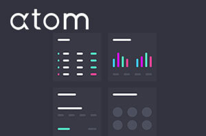 6 Tips for Getting the Most from Atom Finance